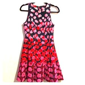 Laggy London Petites Fit & Flare Dress